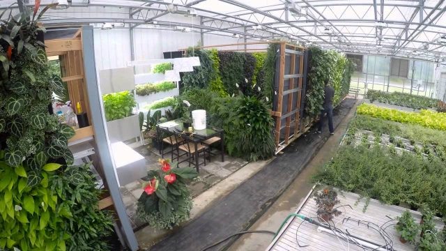 Living Wall Installation Timelapse