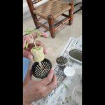 How to setup seedling in Hydroponic System (Kratky Method)