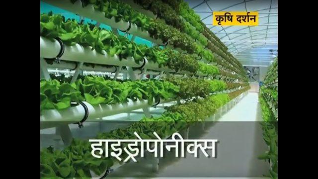 Krishi Darshan – Hydroponics Farming special