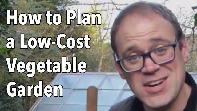 How to Plan a Low-Cost Vegetable Garden