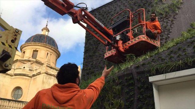 Vertical garden in Elche – Construction process