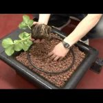 Hydroponic Grow Shop in Europe: Nutriculture Flo Gro System