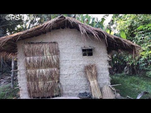 Primitive Technology: Cogon Grass Roof Hut | Short Video