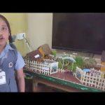 School Project – Organic Gardening and Go Green