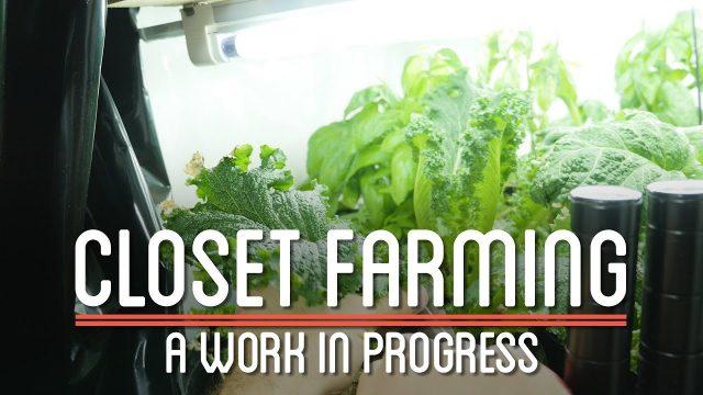 Closet Farming | How to Make Everything