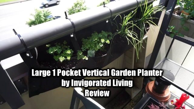 Large 1 Pocket Vertical Garden Planter By Invigorated Living Review
