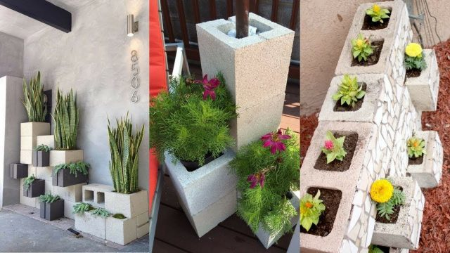 30+ Beautiful Cinder Block Planter Ideas for Your Garden