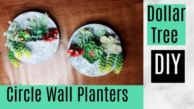 DIY Dollar Tree Circle Wall Planters | Great For Exterior or Interior Wall Decor