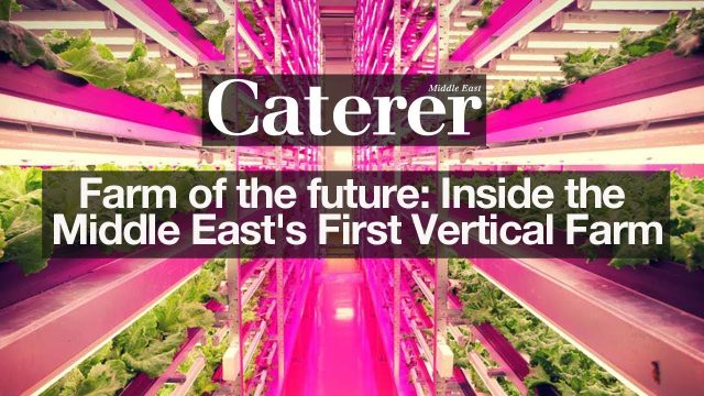 Farm of the future: Inside the Middle East's First Vertical Farm