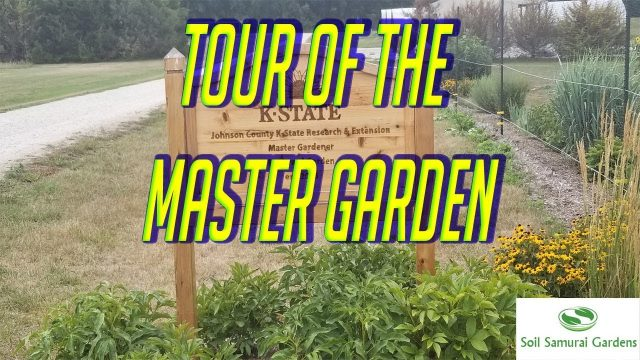 A tour of the Master Gardeners Backyard Garden
