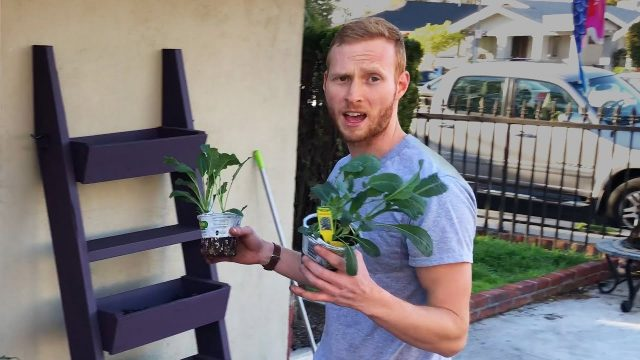 DIY Vertical Garden Planter For Herbs And Veggies