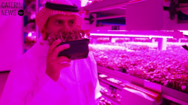 Badia Farms – The GCC's first indoor vertical farm