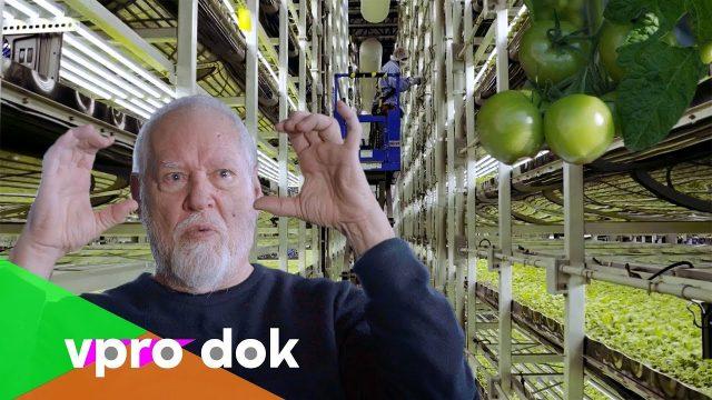Der Eroberungszug der vertikalen Landwirtschaft   – VPRO DOK 2017