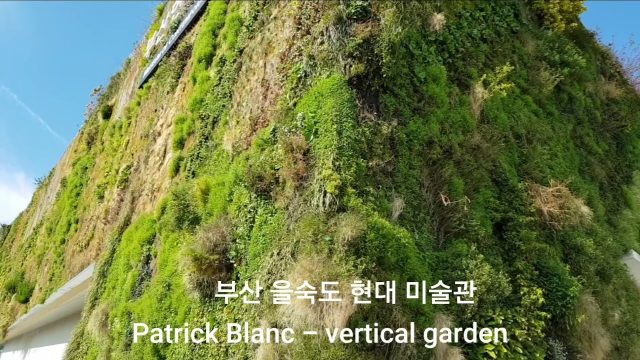 Patrick Blanc – vertical garden (김윤아 – 이상한 세상의 릴리스)