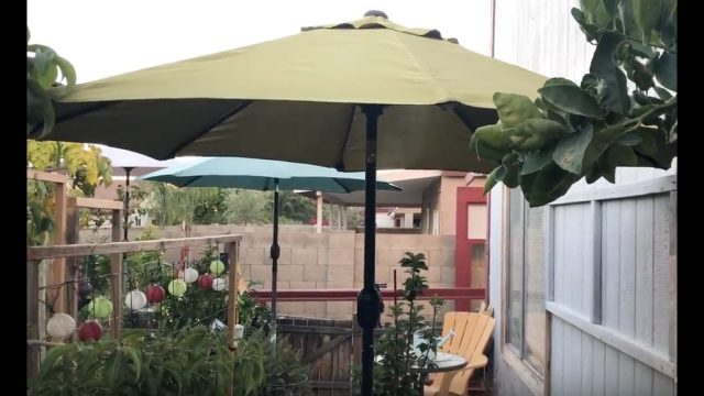 One Arizona Garden | How to Setup a Shade Structure for your Garden