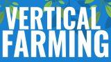 The Genius of Vertical Farming: The Future of Food