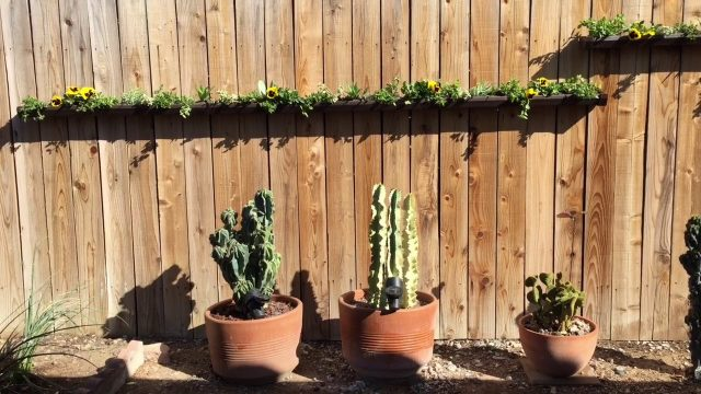 Gutter Planters on The Fence
