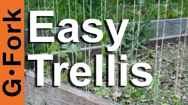 How to make a trellis – GardenFork.TV