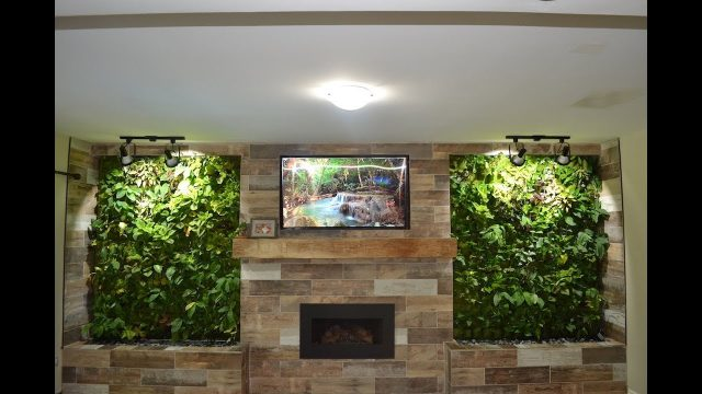 Living Wall Installation – Step by Step