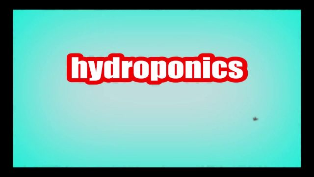 hydroponics Meaning