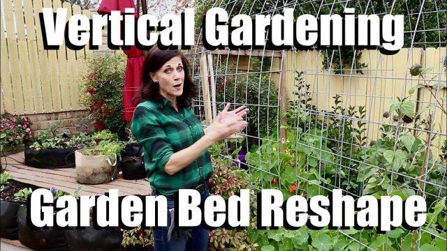 Vertical Gardening – Garden Bed Reshape – Planting Runner Beans & Peas on a Cattle Panel Trellis