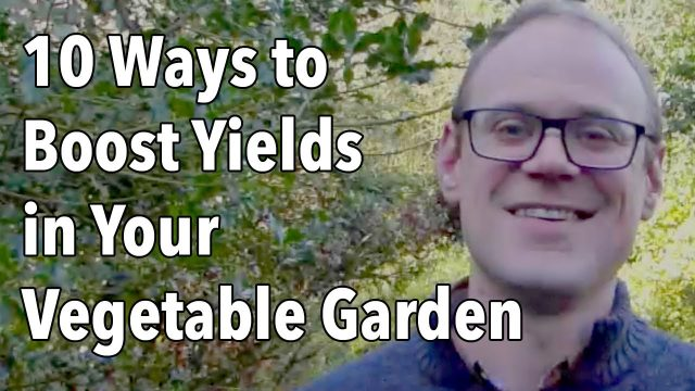 10 Ways to Boost Yields in Your Vegetable Garden