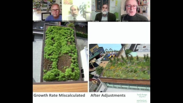 "VS2011#19 – Panel Session ""Green Roofs Without the Hype"""
