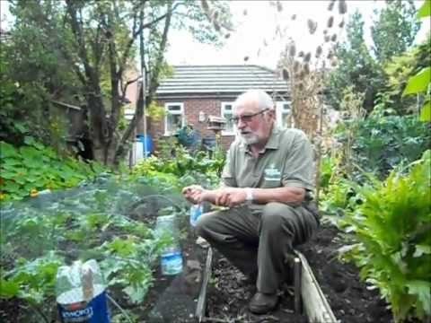 Pima County Master Gardeners