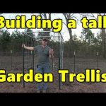 Building a tall cattle panel garden trellis