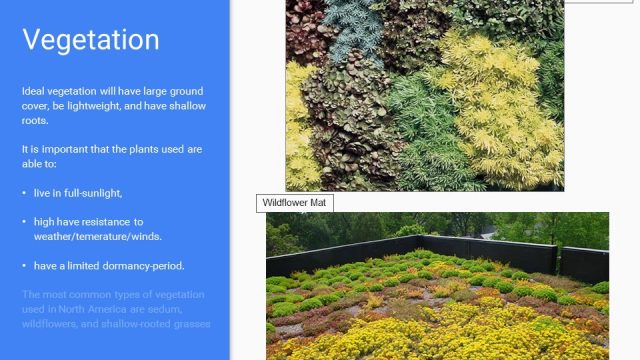 ENGR 3124 – Green Roofs