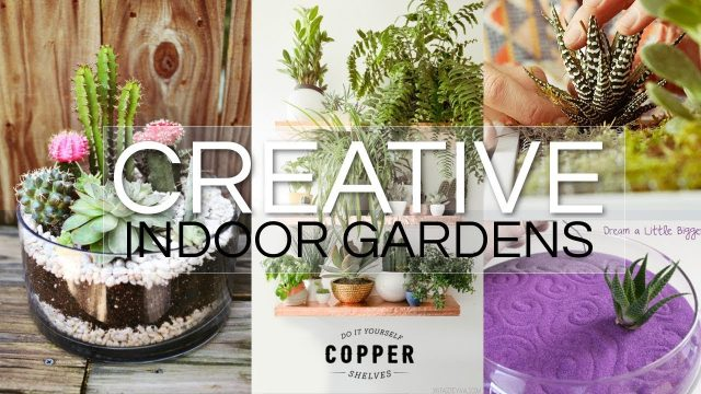 20 Creative Indoor Garden Ideas