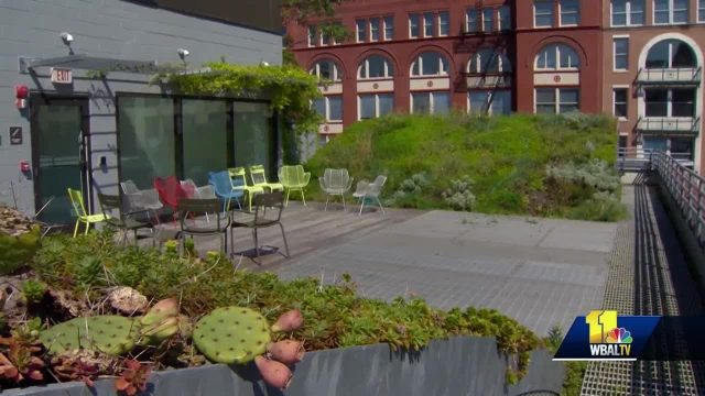 See why green roof concept is growing in U.S.
