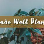 Shade Wall Planter