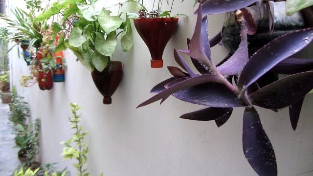 DIY Fantastic Hanging Planters | Easy To Make
