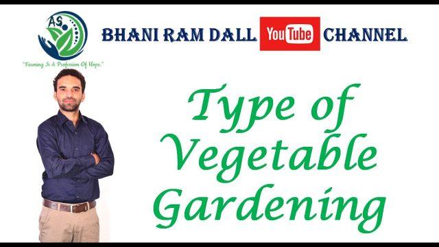 Type of Vegetable Gardening (Horticulture) IBPS AFO, कृषि पर्यवेक्षक, ICAR