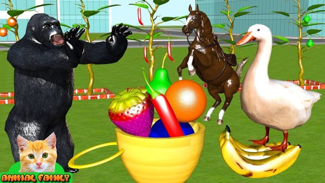 Learn Colors Animals Learn Fruits Garden Farm Animals Cartoon for Children