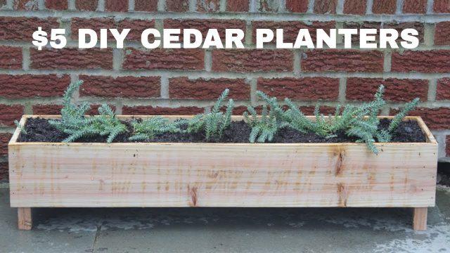 $5 DIY Cedar Planters | NATHAN BUILDS