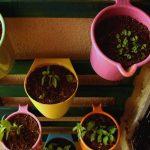Easy Vertical Garden Planter (Using bath mugs)
