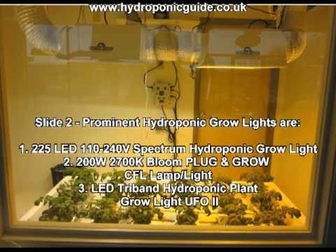Hydroponic Nutrients Explained Plus Choosing Grow Lights and Hydroponics Starter Kits