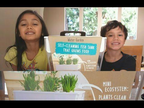 Aquafarm | Gardening With Kids