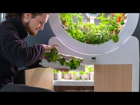 The perfect indoor gardening system