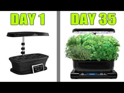Grow Indoor Vegetable Garden Plants with AeroGarden Hydroponics and LED Grow Light How TO