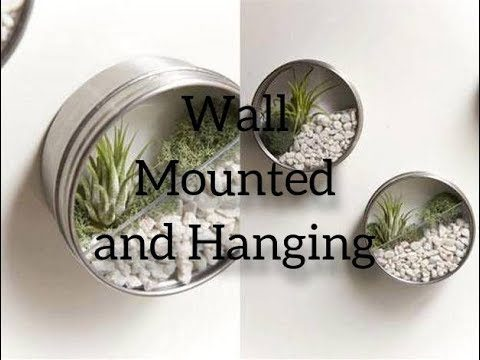 Wall Mounted and Hanging Planters