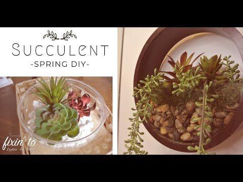 Succulent Spring DIY | Succulent Wall Hanging