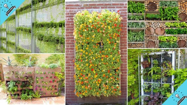 100 Vertical Garden Ideas That Will Change the Way You Think About Gardening