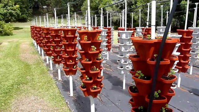Commercial Hydroponic Tower Farm Set-up Mr Stacky Australia
