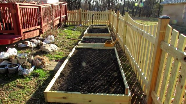 Your First Vegetable Garden?:  A Quick Over View of Raised Bed Gardens – Tips, Purpose & Design