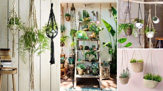 100 Beautiful Indoor Hanging Planters Ideas | DIY Garden