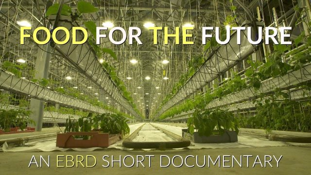 FOOD FOR THE FUTURE – A Short Documentary