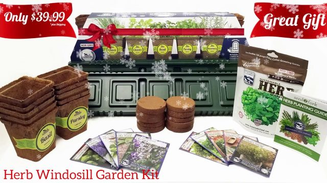 Great Holiday Gift: Herb Windowsill Garden Kit